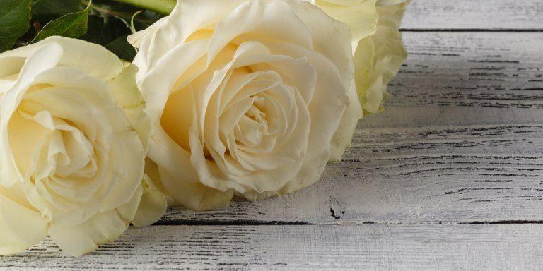 White roses lying on table